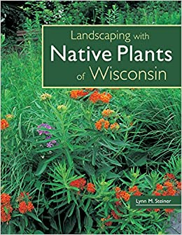 Native Plant Landscape: Using Wildflowers In The Garden