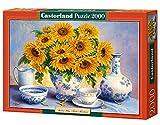 Golden Blue, Trisha Hardwick, 2000 Piece By Castorland Puzzles