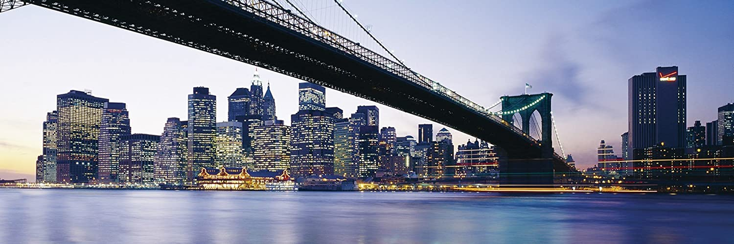new york twitter header