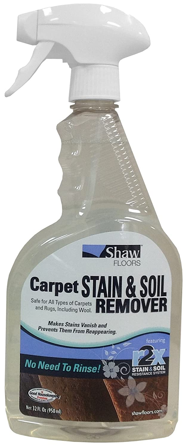 r2x carpet stain remover