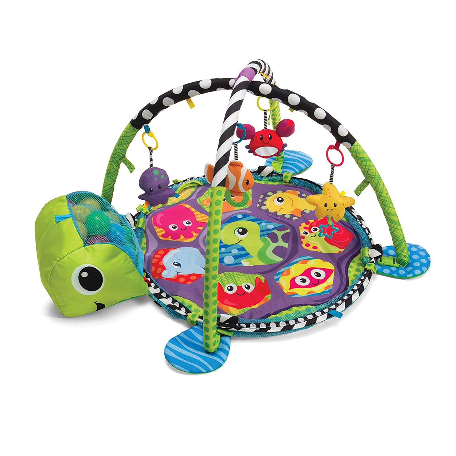 age appropriate toy for a 6 month old