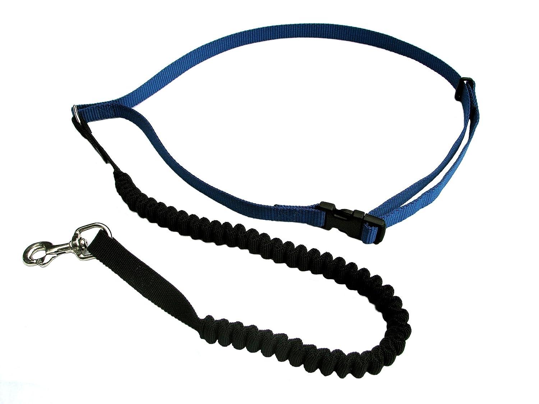 best dog leash for running