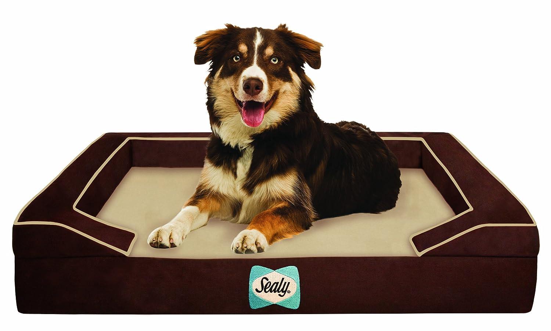 where to buy orthopedic dog beds