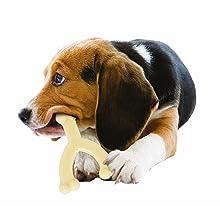 Nylabone Dura Chew Wishbone