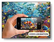 Underwater 1000-Pieces AR Puzzle