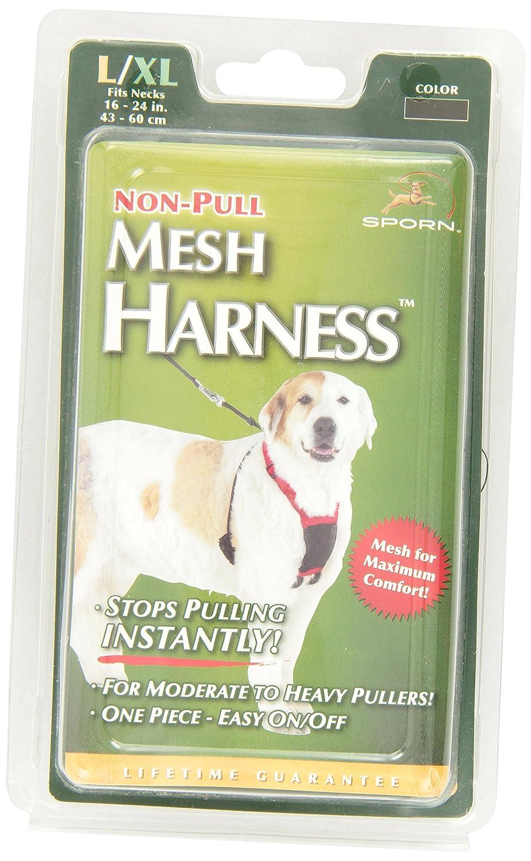 no pull leash reviews